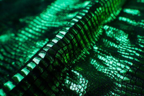 Aspide smeraldo